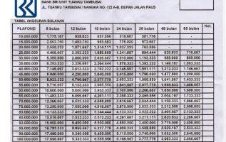 Bunga Pinjaman Bank BRI Terbaru Kisaran Berapa?